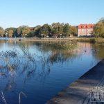 park miejski nad jeziorem