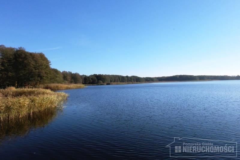 jezioro Drężno